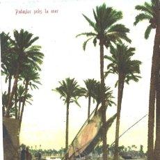 Postales: CAIRO. EGIPTO. PALMIER PRÈS LA MER. 1910. Lote 110062191