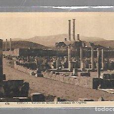 Postales: TARJETA POSTAL DE TIMGAD, ARGELIA - MARCHE DE SERTIUS ET COLONNES DU CAPITOLE.. Lote 121312551