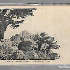 Postales: TARJETA POSTAL DE MICHELET, ARGELIA - CEDRES DE DJURDJURA. SOMMET DE L'AZERON N'TOHER. 5. J.ACHARD. Lote 121313175