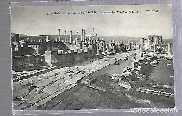TARJETA POSTAL. ARGELIA. RUINES ROMAINES DE TIMGAD - VOIE DU DECUMANUS MAXIMUS. 12. ND PHOTO (Postales - Postales Extranjero - África)