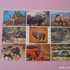 Postales: POSTAL DE SUDÁFRICA. FAUNA AFRICANA.. Lote 131102832