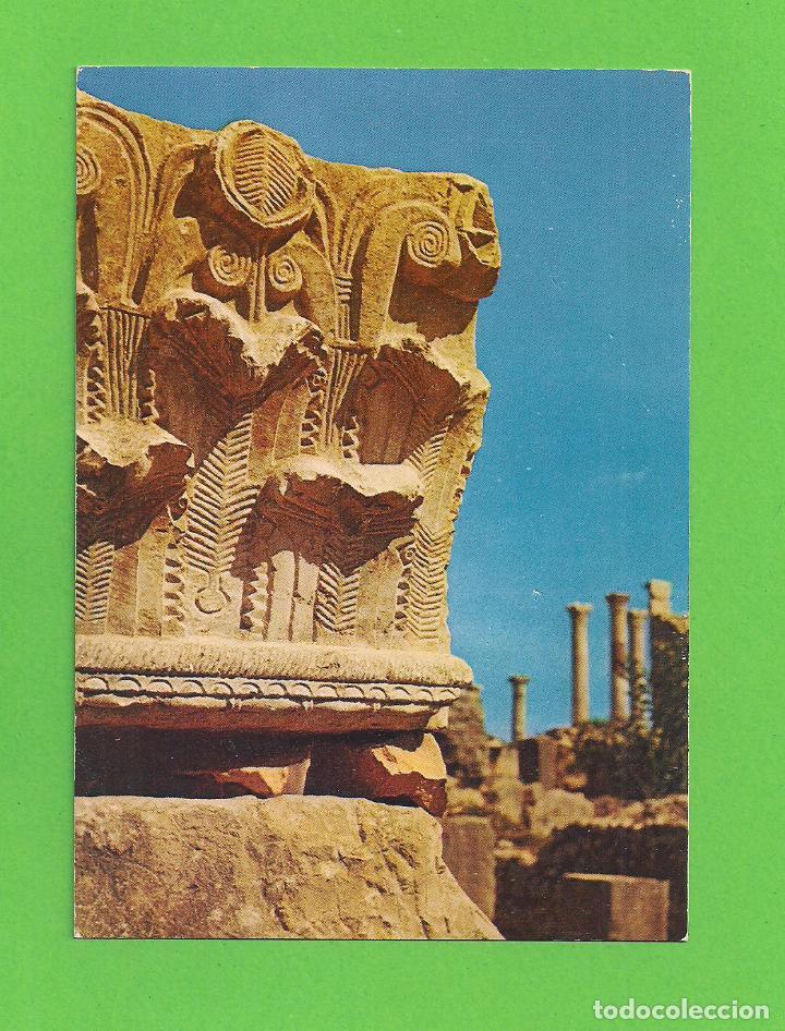 POSTAL - RUINES - VOLUBILIS - MARRUECOS - (Postales - Postales Extranjero - África)