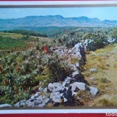 Postales: INYANGA LANDSCAPE INYANGANI MOUNTAIN RHODESIA AFRICA. Lote 134058485