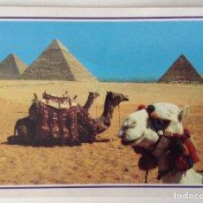 Postales: EGIPTO EGYPT GIZA THE PYRAMIDS. Lote 134956270