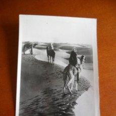 Postales: ANTIGUA POSTAL DEL DESIERTO DEL CAIRO - EGIPTO - LEHNERT & LANDROCK. Lote 135253782