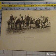 Postales: POSTAL DE ARGELIA. SIGLO XIX - 1905. ESCENA VIVA ÉTNICA TIPISMO MEHARA CAMELLOS CAMELLEROS. 1187. Lote 139773226
