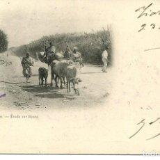 Postales: ARGELIA-EN RUTA- AÑO 1901 SIN DIVIDIR. Lote 146550786