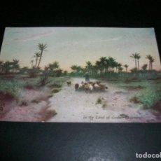 Postales: EGIPTO LAND OF GOSEN POSTAL. Lote 146956206