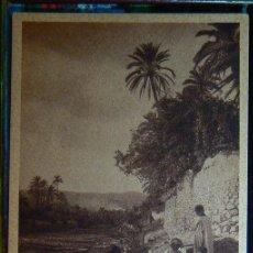 Postales: ALGERIE RIVIERE DANS L'OASIS ALGERIA. Lote 147292386