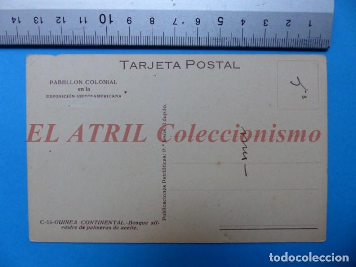 Postales: GUINEA ESPAÑOLA Y CONTINENTAL, 9 POSTALES, VER FOTOS ADICIONALES - Foto 5 - 153189298