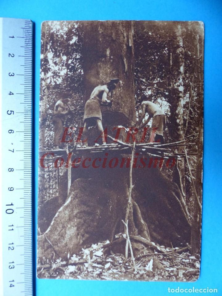 Postales: GUINEA ESPAÑOLA Y CONTINENTAL, 9 POSTALES, VER FOTOS ADICIONALES - Foto 18 - 153189298