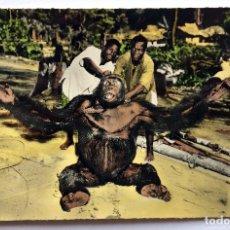 Postales: POSTAL AFRICA OCCIDENTAL FRANCESA 1516 FAUNA AFRICANA GORILA MACHO - HOA QUI - SIN USAR/CIRCULAR. Lote 156652222
