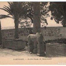 Postales: POSTAL TÚNEZ. CARTHAGE - JARDIN-MUSÉE DE SAINT-LOUIS. Nº 53. Lote 156981238