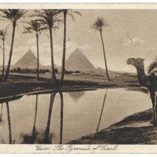 Postales: P- 9251. POSTAL CAIRO, PYRAMIDS OF GISEH. . Lote 159063062