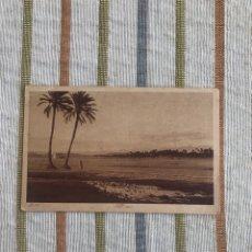 Postales: POSTAL N178. NELL'OASI. MARRUECOS EDITORES L & L. Lote 165016777