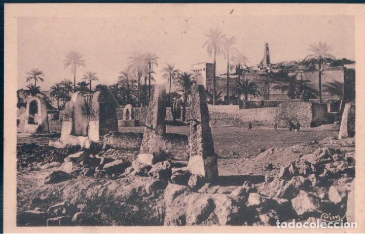 POSTAL ARGELIA - GHARDAIA - LES PUITS DANS L'OUED - COMBIER (Postales - Postales Extranjero - África)