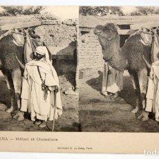 Postales: ANTIGUA POSTAL ESTEREOSCOPICA DE BISKRA (ALGERIA). MEHARI ET CHAMELIERS. SIN CIRCULAR. Lote 173076192