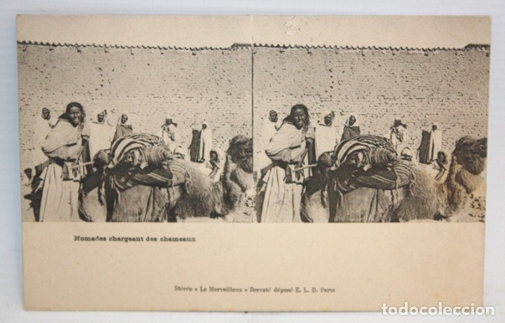 ANTIGUA POSTAL ESTEREOSCOPICA - NOMADES CHARGEANT DES CHAMEAUX. SIN CIRCULAR (Postales - Postales Extranjero - África)