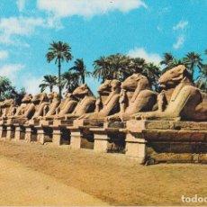 Postales: EGIPTO, KARNAK, LA AVENIDA DE LAS ESFINGES - EDITA CYZ 24005_9 - S/C. Lote 180174526
