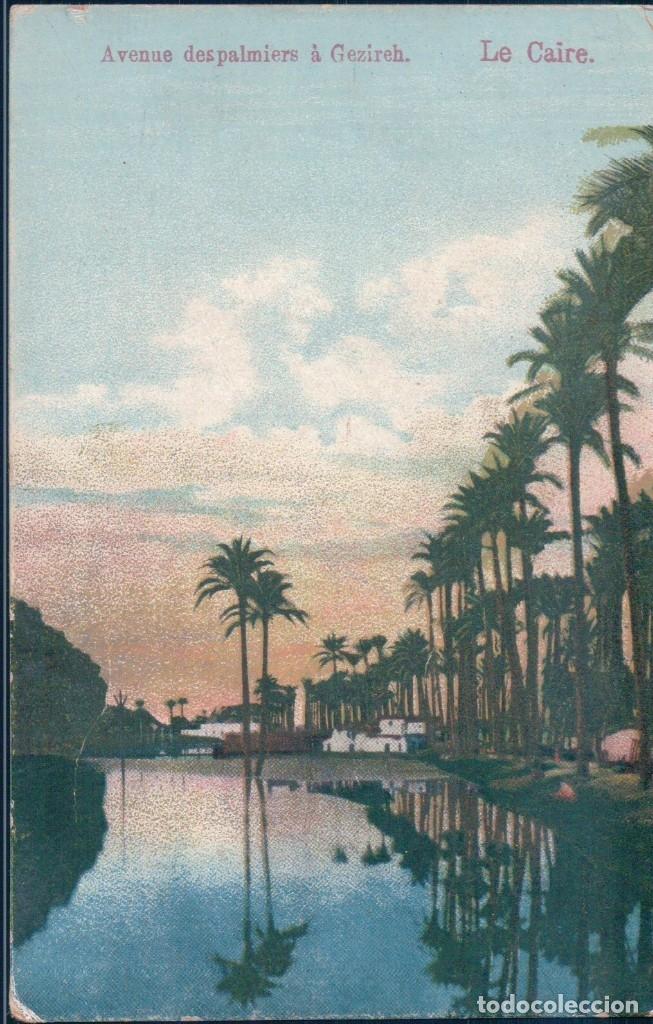 POSTAL EL CAIRO - LE CAIRE - AVENUE DESPALMIERS A GEZIREH - EGYPTO (Postales - Postales Extranjero - África)
