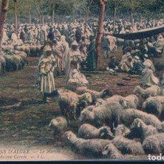 Postales: POSTAL ARGELIA - ENVIRONS D'ALGER - LE MARCHE DE MAISON CARREE - LL. Lote 183296011