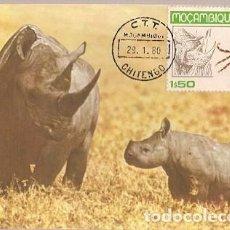Postales: MOZAMBIQUE & MAXIMO, FAUNA, RINOCERONTE, RHINOCERONTIDAE 1980 (3758). Lote 183486237