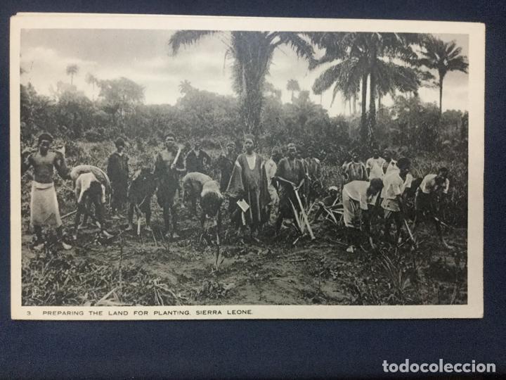 Postales: 12 POSTALES SIERRA LEONE COLONY - 1924 - SERIE 5 y 6 - THE BRITISH EMPIRE EXHIBITION - TUCK'S - SC - Foto 8 - 190813690