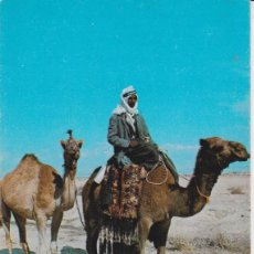 Postales: AFRICA, BEDUINO CON SU CAMELLO - PRINTED IN THE HOLY LAND 514 - S/C. Lote 192278707