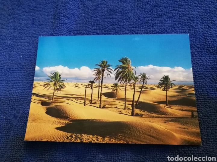 POSTAL DESIERTO DEL SAJARA (Postales - Postales Extranjero - África)