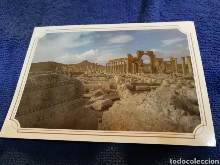 POSTAL SIRIA PALMYRA (Postales - Postales Extranjero - África)