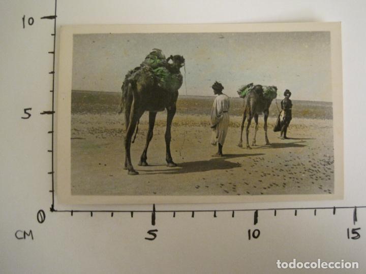 Postales: SAHARA ESPAÑOL-VISTA DE UN POBLADO NOMADA-41-FOTO A.DE PORRAS-POSTAL FOTOGRAFICA ANTIGUA-(68.173) - Foto 5 - 195308496
