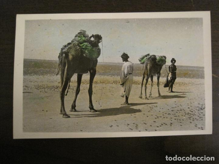 SAHARA ESPAÑOL-VISTA DE UN POBLADO NOMADA-41-FOTO A.DE PORRAS-POSTAL FOTOGRAFICA ANTIGUA-(68.173) (Postales - Postales Extranjero - África)