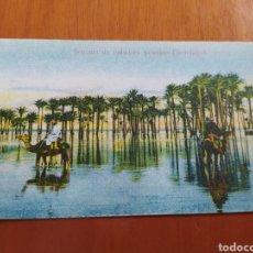 Postales: POSTAL ANTIGUA DE EGIPTO. Lote 207080847