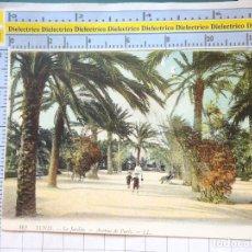 Postales: POSTAL DE TÚNEZ TUNISIE TUNIS. AÑOS 10 30. LE JARDIN AVENUE DE PARIS. NIÑOS PARQUE. 77. Lote 213484917