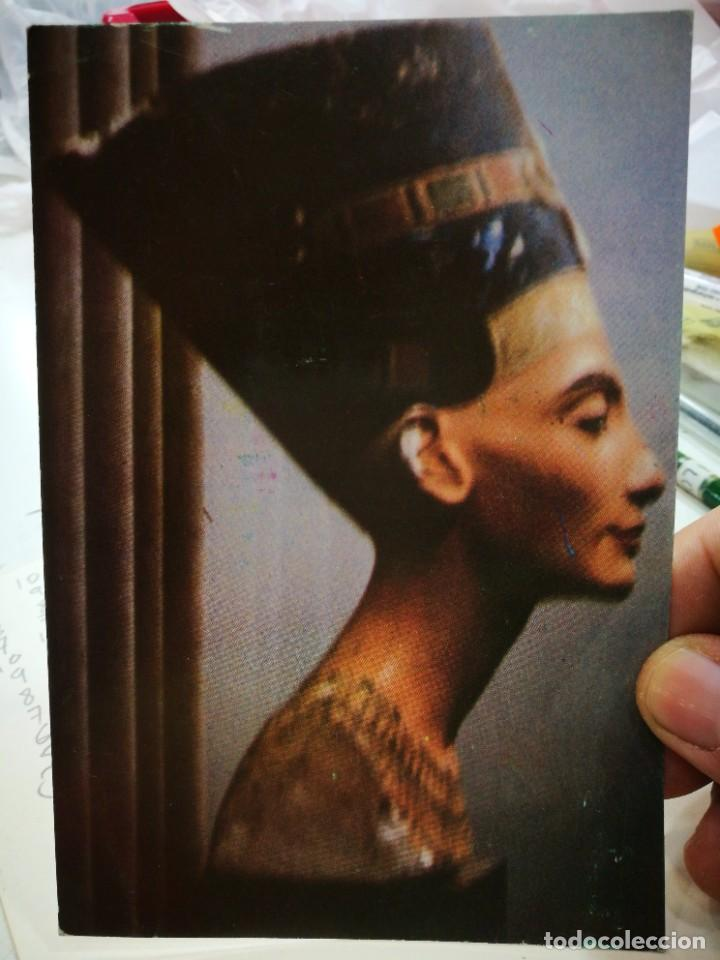 POSTAL EGIPTO THE FAMOUS BUST OF NEFERTITI WIFE OF KING AKHNATON S/C (Postales - Postales Extranjero - África)