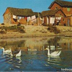 Cartoline: MADAGASCAR LA CAMPIÑA MALGACHE POSTAL NO CIRCULADA. Lote 257620025