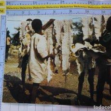 Postales: POSTAL DE ÁFRICA SUBSAHARIANA. ESCENA VIVA TIPISMO FOLKLORE ÉTNICA. SECADO DE PIELES SERPIENTE. 826. Lote 261965100