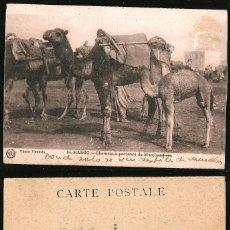 Postales: 1137 - AFRICA MARRUECOS / CAMELLOS CHAMEAUX PORTEURS DE MARCHANDISES POSTAL 1920' FLANDRIN. Lote 277155623