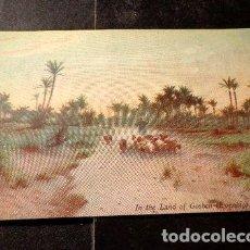 Postales: EGIPTO CIRCA 1910 TUCK SONS IN THE LAND OF GOSHEN. Lote 277387753