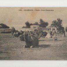 Postales: ALGERIA, PARADA DE UNA CARAVANA ♦ ALGÉRIE, HALTE D'UNE CARAVANE. Lote 278549563