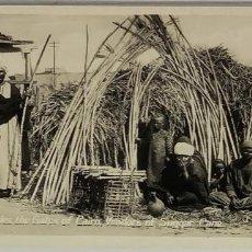 Postales: EGIPTO, EGYPT CAIRO VENDORS OF SUGAR CANE. ORIENTAL BUREAU. FOTO REAL. Lote 288730318