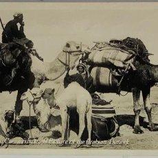 Postales: EGIPTO, EGYPT CAIRO WHILE THE CARAVAN HALTS. ORIENTAL BUREAU. FOTO REAL. Lote 288730888