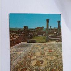 Postales: POSTAL -MARRUECOS - VOLUBILIS RUINES ROMAINES MOSAICO - CIRCULADA. Lote 295008833