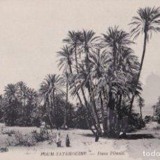 Postales: TUNEZ, FOUM-TATAHOUINE, EN EL OASIS – NEURDEIN PHOT Nº61 – S/C. Lote 295292268