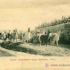 Postales: POSTAL DE PERU, AREQUIPA,LLAMAS TRANSPORTANDO CARGA. Lote 4782785