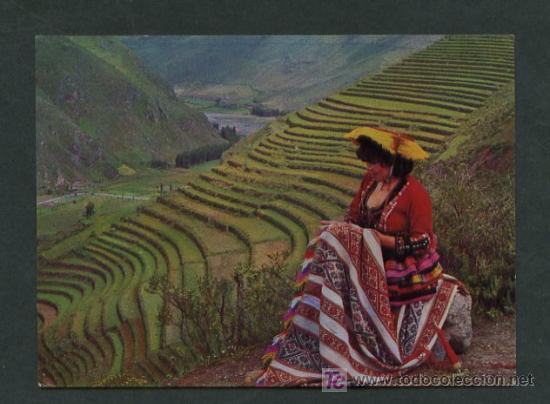 Pisac Dep Cuzco Andenerias Terrazas Para Cultivo En Pisaq Ed Foto Corbacho Nueva
