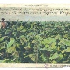 Postales: PLANTACIÓN DE TABACO EN CUBA - MATASELLOS 1935. Lote 25055045