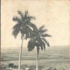 Postales: PS3267 POSTAL DE MATANZAS, EN EL VALLE DEL YUMURÍ (CUBA). CIRCULADA ENTRE CUBA Y MÁLAGA EN 1908. Lote 25946092
