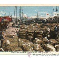 Postales: NEW ORLEANS. COTTON BALE SCENE ON THE LEVEE. - PAQUETES DE ALGODÓN. . Lote 28480316