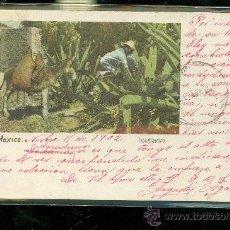 Postales: TARJETA POSTAL COSTUMBRISTA. MEXICO. TLACHIQUERO. J. GRANAT. VER DORSO. . Lote 28825972